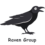 Raven Group